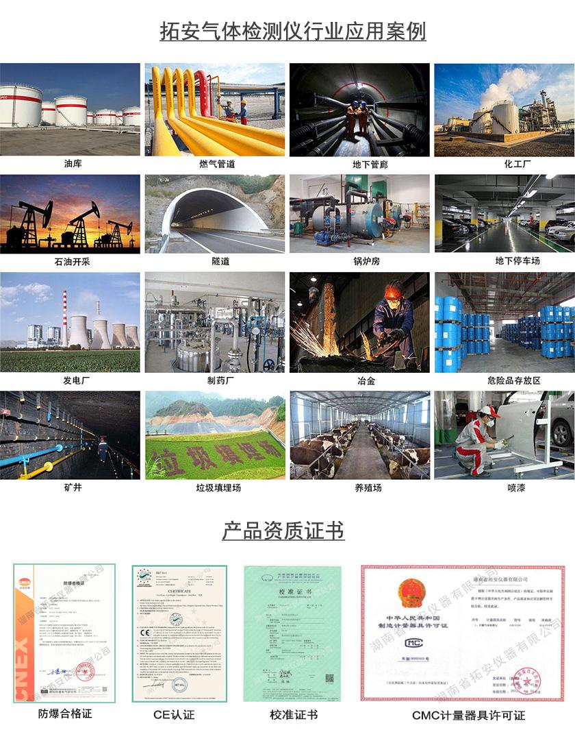 固定式气体检测仪,固定式气体探测器-湖南省拓安仪器有限公司